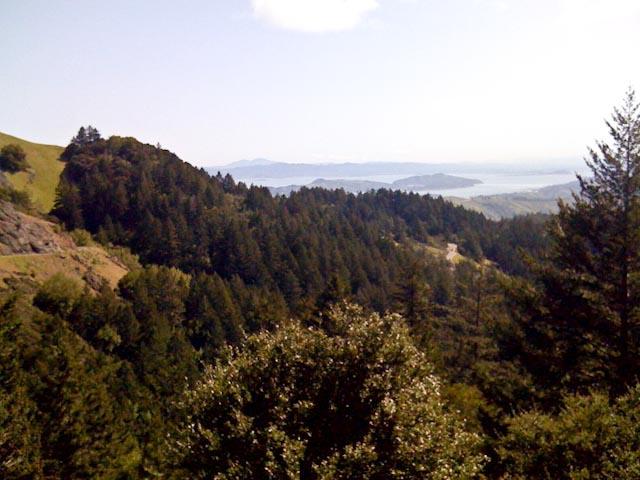 20100326-Mt Tam 5